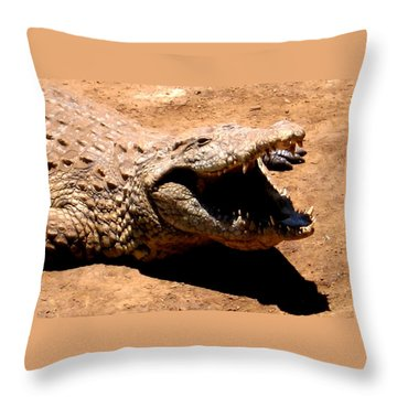 Put It Right Here Throw Pillow
