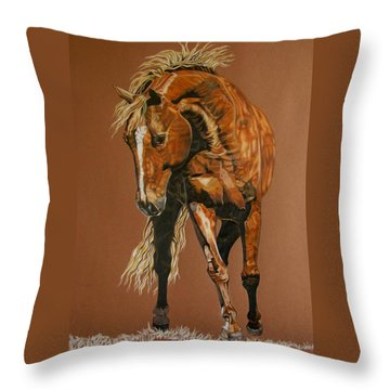 Puzzle Throw Pillow by Melita Safran