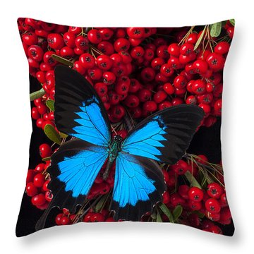 Pyracantha And Butterfly Throw Pillow by Garry Gay