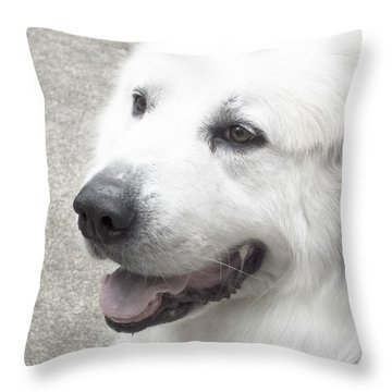 Pyrenees In The Park Throw Pillow