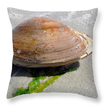 Throw Pillow featuring the photograph Quahog by Janice Drew