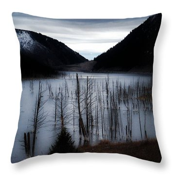 Quake Lake Throw Pillow by Tarey Potter