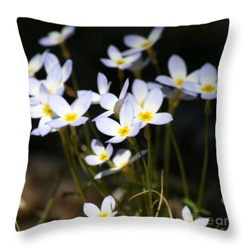 Quaker Ladies  Throw Pillow by Neal Eslinger
