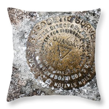 Quandary Survey Marker Throw Pillow