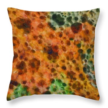 Quantum Life Throw Pillow by Dan Sproul
