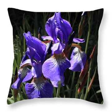 Quebec Provincial Flower Throw Pillow