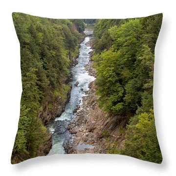 Quechee Gorge State Park Throw Pillow