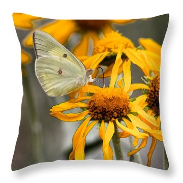 Queen Alexandra's Sulphur Throw Pillow