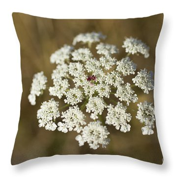 Queen Anne's Lace Throw Pillow