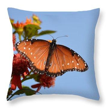 Queen Butterfly Throw Pillow by Debra Martz