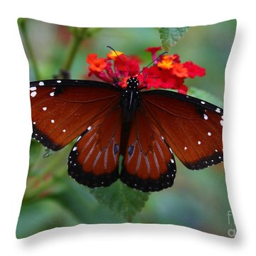 Queen Butterfly Throw Pillow