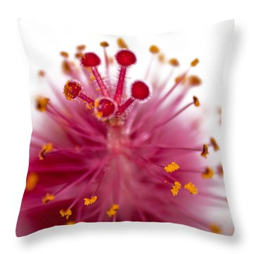 Queens Crown Throw Pillow by Camille Lopez