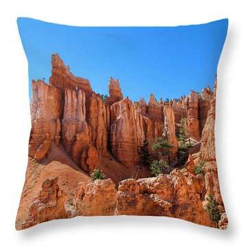 Queens Garden Window Throw Pillow