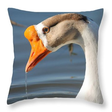 Quenching Thirst Throw Pillow by Lorri Crossno