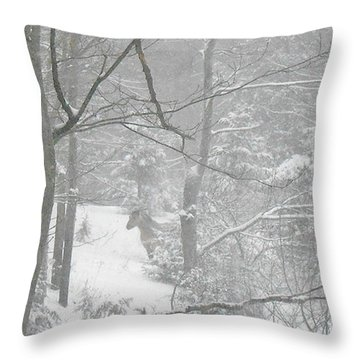 Querida In The Snow Storm Throw Pillow by Patricia Keller