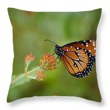 Quick Pose Throw Pillow