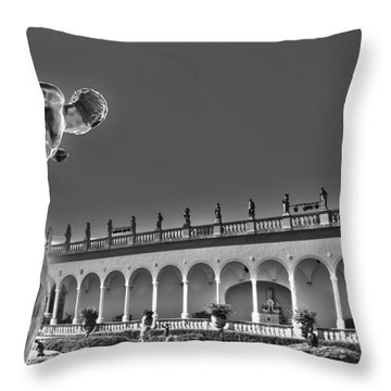 Quicksilver Throw Pillow by Timothy Lowry