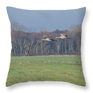 Quidditch Throw Pillow