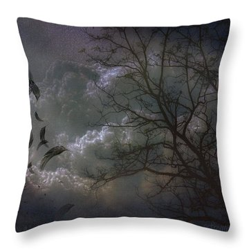 Quiet After The Storm Throw Pillow by Mimulux patricia no No