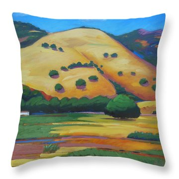 Quiet Afternoon Throw Pillow by Gary Coleman