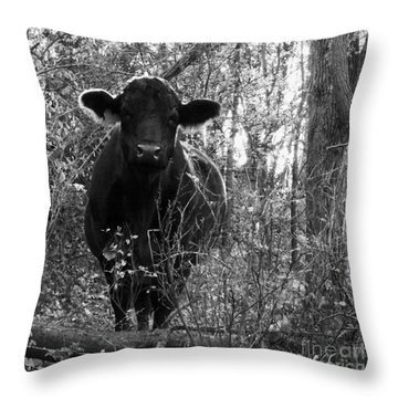 Quiet Companion Throw Pillow