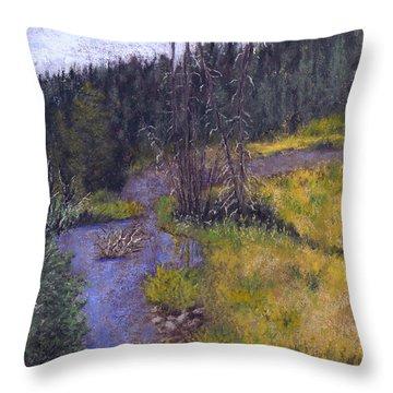Quiet Creek Throw Pillow by Ginny Neece