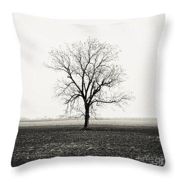Quiet Desperation Throw Pillow by Scott Pellegrin