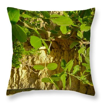 Quiet Throw Pillow by Floria Varnoos