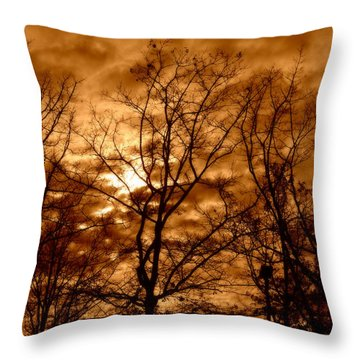Quiet Throw Pillow by Heather L Wright