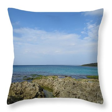 Quiet In The Sea Throw Pillow