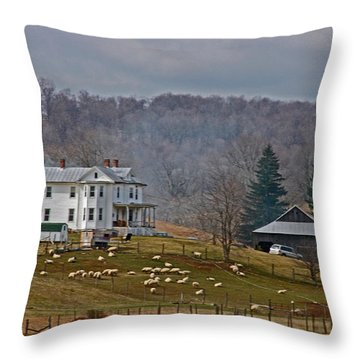 Quiet Living Throw Pillow