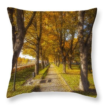Quiet Parkway Throw Pillow