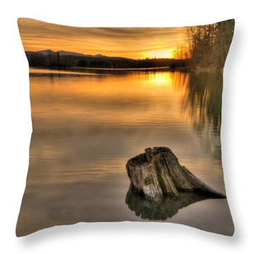 Quiet Times  Throw Pillow