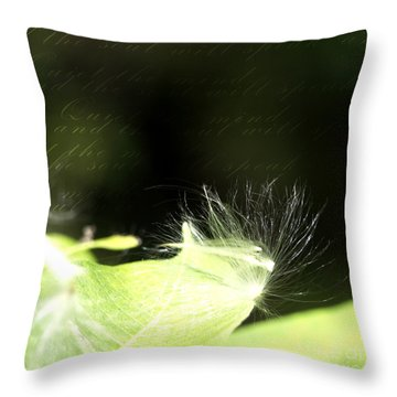 Quiet Your Mind Throw Pillow