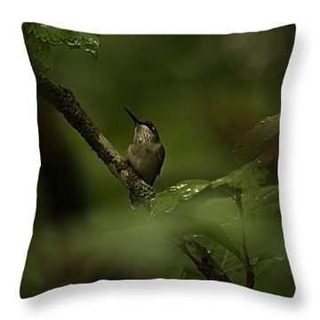 Quietly Waiting Throw Pillow by Tammy Schneider