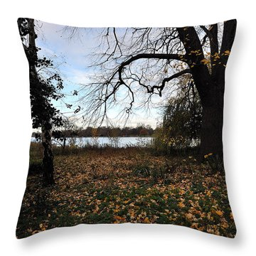 Quietude Throw Pillow by Marwan Khoury