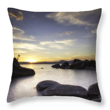 Quietude Throw Pillow by Michele Steffey