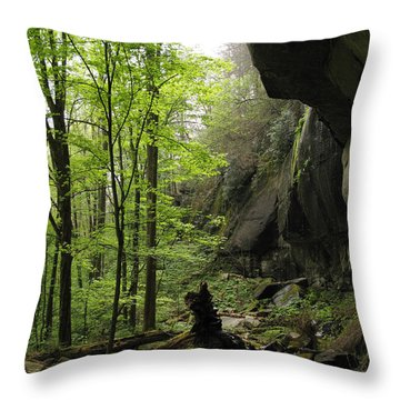 Quilliams Cave Throw Pillow by Melinda Fawver