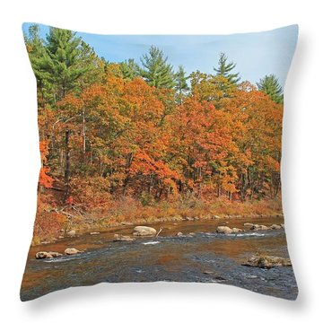 Quinapoxet River In Autumn Throw Pillow