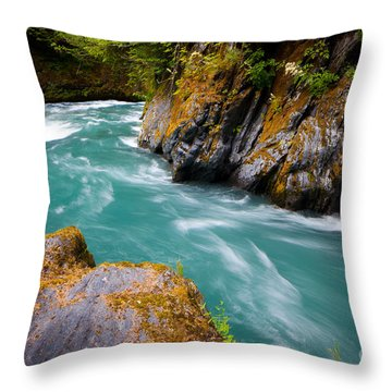 Quinault River Bend Throw Pillow