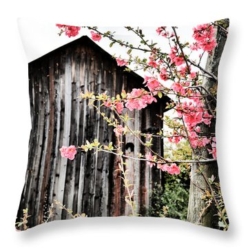 Quince Dreams Throw Pillow