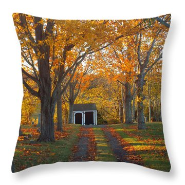 Quivet Morning Throw Pillow by Dianne Cowen