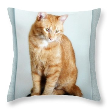 Quo The Poser - Photograph By Rgiada Throw Pillow