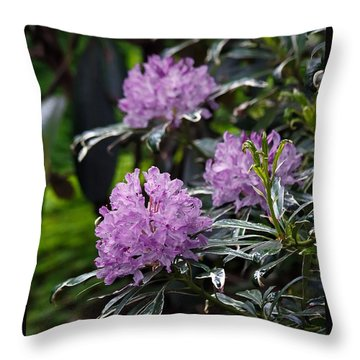 R. Ponticum Variegatum Throw Pillow