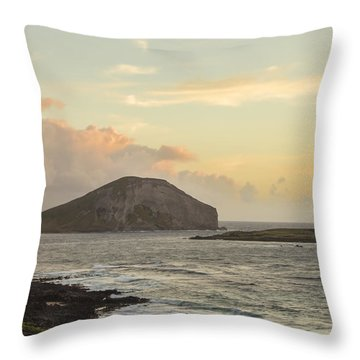 Throw Pillow featuring the photograph Rabbit And Turtle Island At Sunrise 1 by Leigh Anne Meeks
