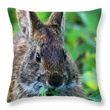 Rabbit Food Throw Pillow
