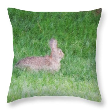 Rabbit In The Grass Throw Pillow by Michael Stowers