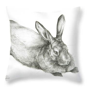 Rabbit Throw Pillow by Jeanne Maze