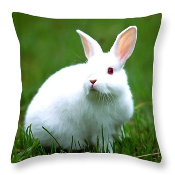 Rabbit On Grass Throw Pillow by Lanjee Chee