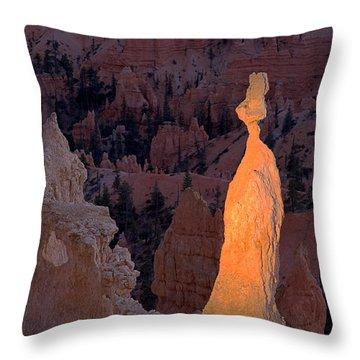 Rabbit Sunset Point Bryce Canyon National Park Throw Pillow